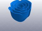 玫瑰花 花枝 花瓣