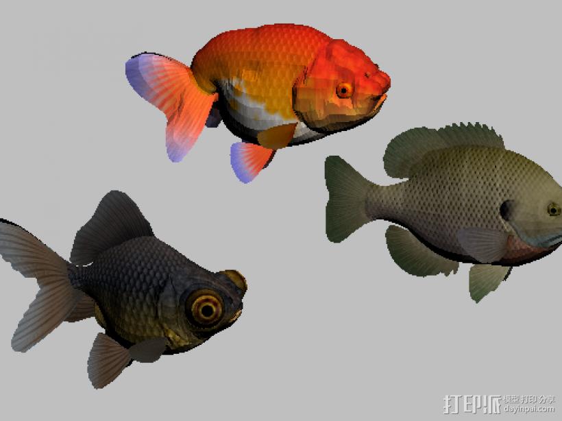 三只金鱼 3D打印模型渲染图
