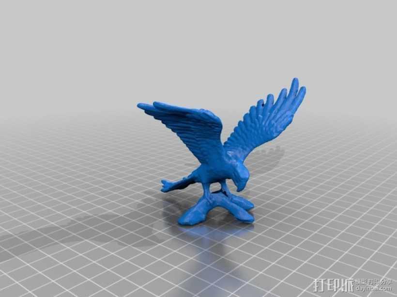 鹦鹉 3D打印模型渲染图