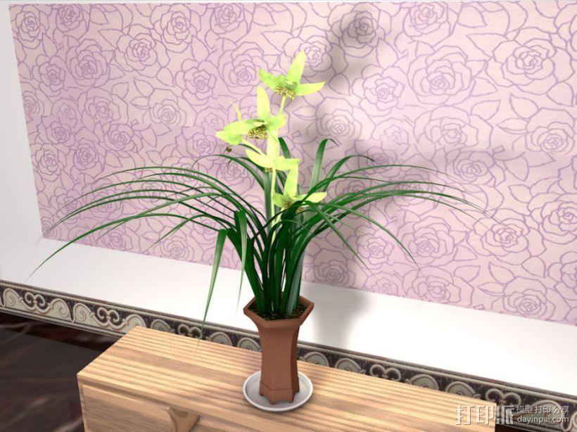 兰花 3D打印模型渲染图