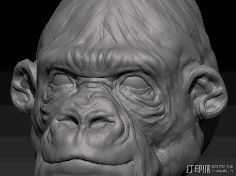 猩猩 3D打印模型渲染图