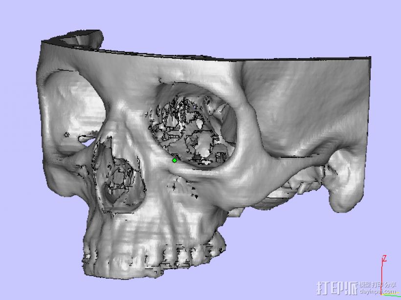 上头骨 3D打印模型渲染图