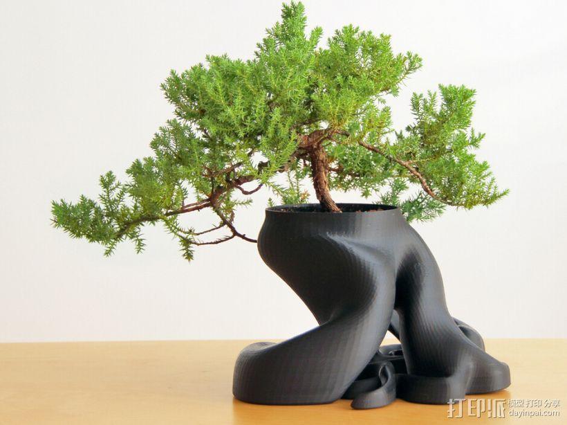 創意花盆 3D打印模型渲染图