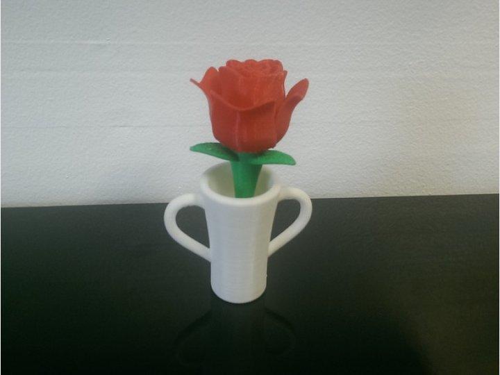 花盆里的玫瑰花