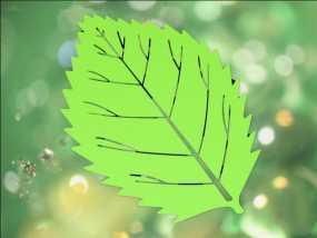 感恩节树叶模型