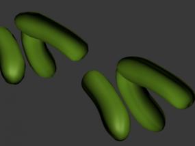 黄瓜很嫩的一些小黄瓜