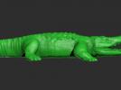 凶猛鳄鱼模型