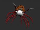 干瘪的螃蟹模型