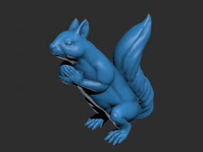 一只大松鼠模型
