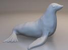 可爱的海豹模型