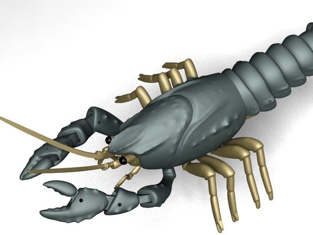 小龙虾3d打印图片 3d打印照片 3d打印实物素材 quan