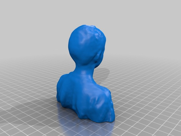 Dunagan半身像  3D打印模型渲染图
