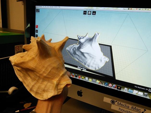 海螺壳 3D打印模型渲染图