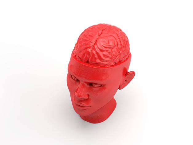 人脑形纸镇/压纸器