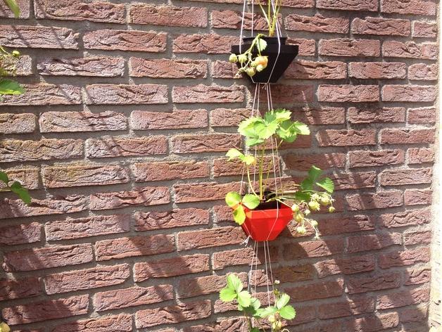 壁挂式盆栽盆