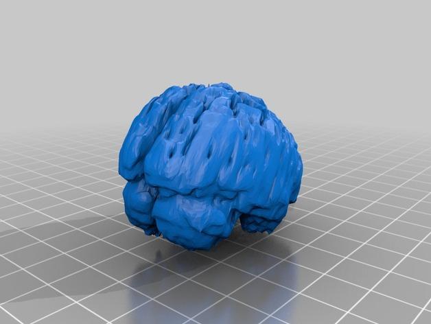人脑  模型
