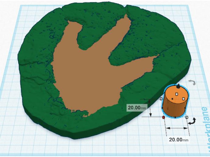 恐龙脚印化石模型
