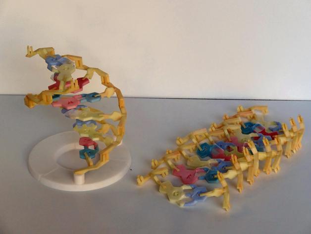 DNA 模型 3D打印模型渲染图