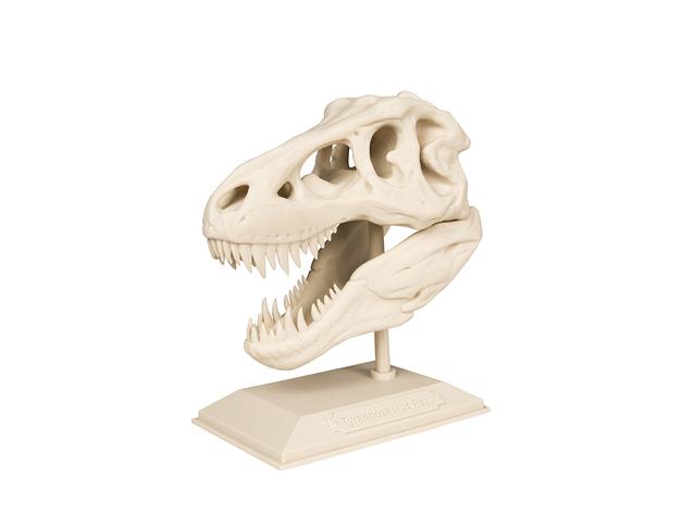 霸王龙头骨 3D打印模型渲染图