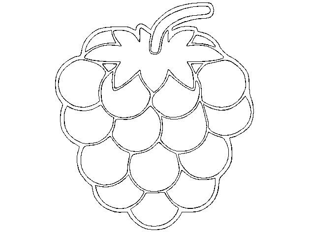 树莓 坠饰