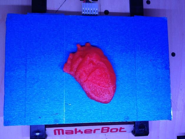 心脏解剖雕塑