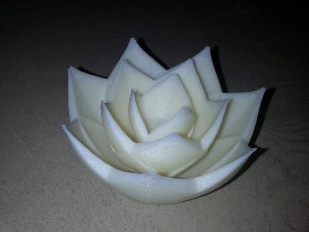 花  3D打印模型渲染图