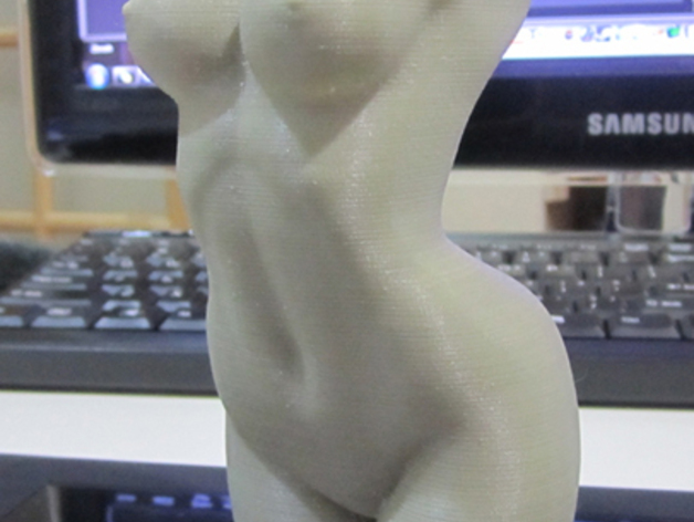 人体躯干 模型