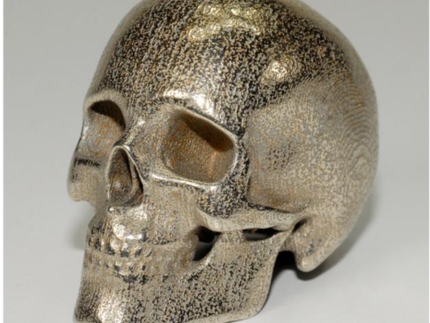 人类骷髅头
