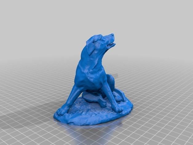 拉布拉多犬 模型