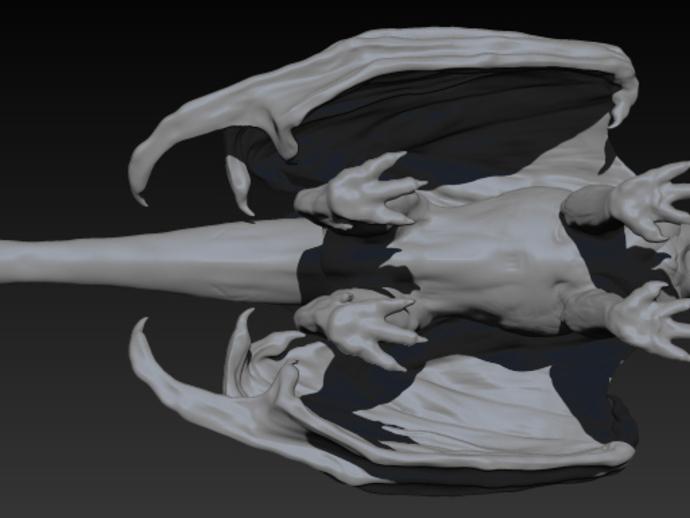 三尾龙模型