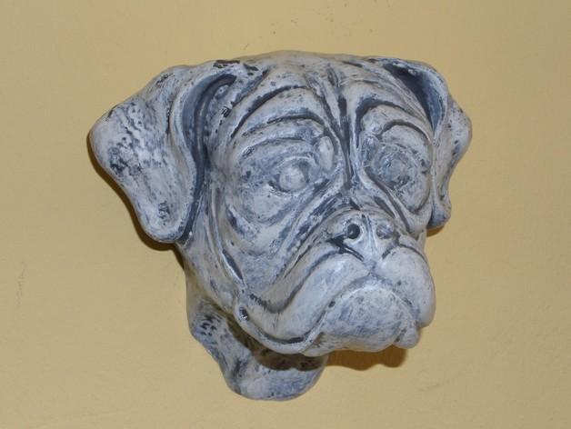拳师犬头部模型