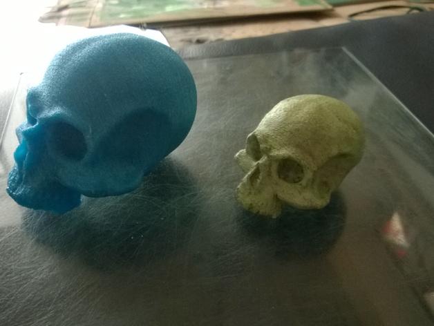 骷髅头 头骨 3D打印模型渲染图