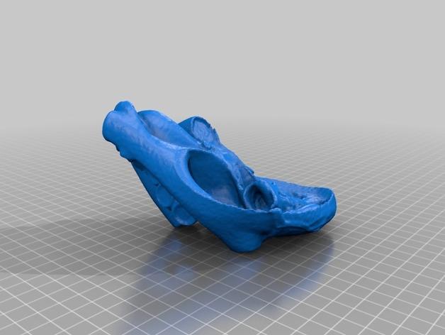 心脏解剖原型1 3D打印模型渲染图