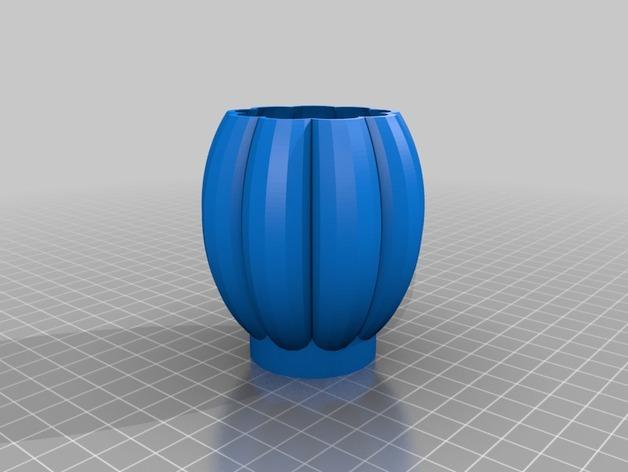 个性化花瓶/花盆