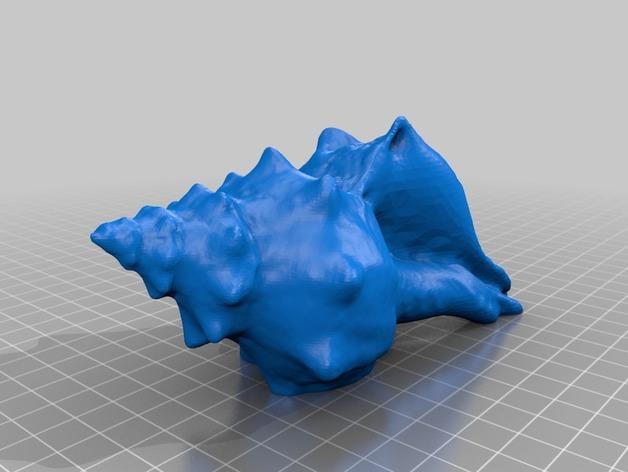 贝壳 3D打印模型渲染图