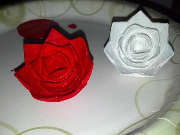 玫瑰花 花朵