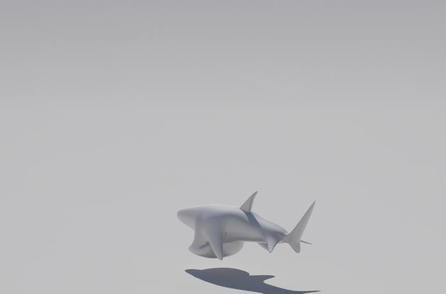 鲨鱼开瓶器