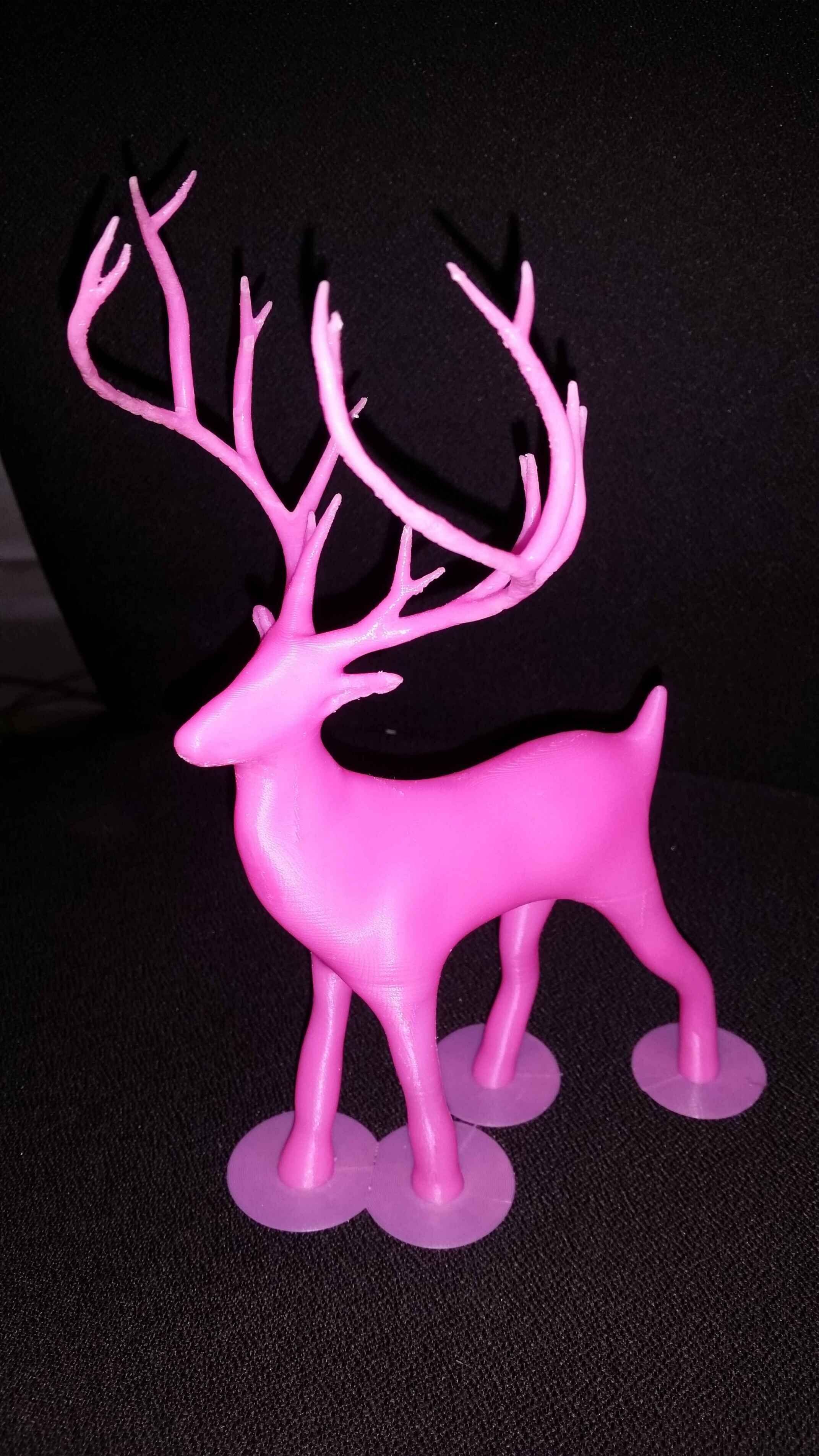 圣诞节的麋鹿