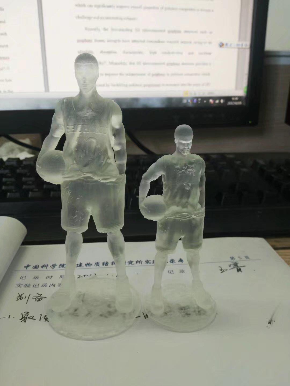 樱木 3D打印图片
