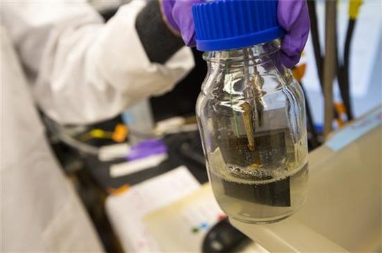 哈佛用细菌将二氧化碳CO2转化为可3D打印的生物聚合物