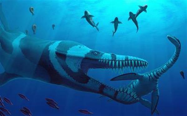 科学家利用3D打印研究出蛇颈龙如何在水中游动的秘密